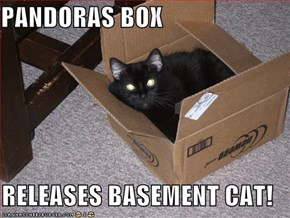 PANDORAS BOX  RELEASES BASEMENT CAT!