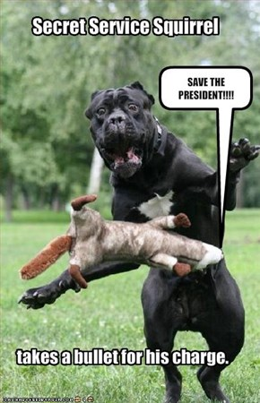 SAVE THE PRESIDENT!!!!
