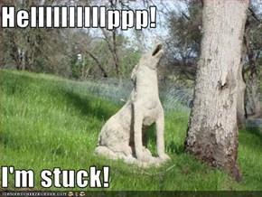 Hellllllllllppp!  I'm stuck!