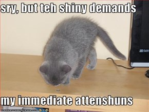 sry, but teh shiny demands  my immediate attenshuns