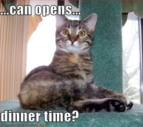 ...can opens...  dinner time?