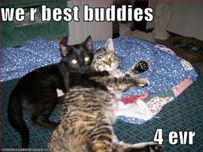 we r best buddies  4 evr