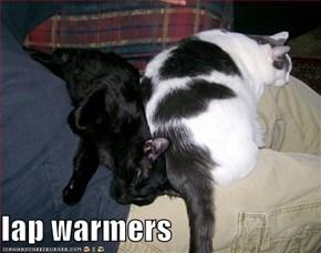 lap warmers