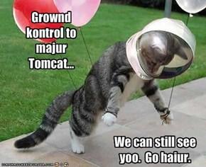 Grownd kontrol to majur Tomcat...