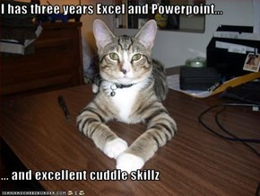 I has three years Excel and Powerpoint...  ... and excellent cuddle skillz