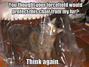 You thought your forcefield would protect this chair from my fur?