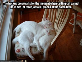 The backup crew waits for the moment when ceiling cat cannot be in two (or three, or four) places at the same time.