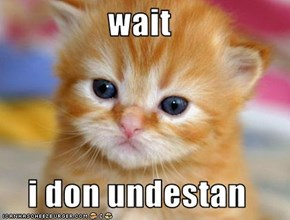wait  i don undestan