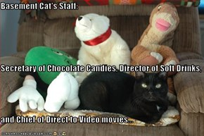 Basement Cat's Staff:  Secretary of Chocolate Candies, Director of Soft Drinks,  and Chief of Direct to Video movies...