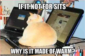 IF IT NOT FOR SITS