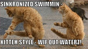 SINKRONIZED SWIMMIN -   KITTEH STYLE - WIF OUT WATERZ!