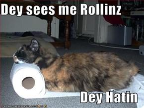 Dey sees me Rollinz  Dey Hatin