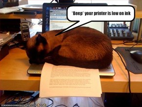 *Beep* your printer is low on ink
