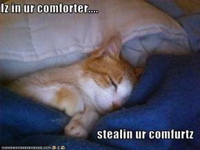 Iz in ur comforter....  stealin ur comfurtz