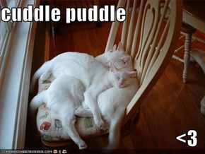 cuddle puddle  <3