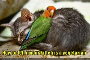 How to tell if your kitteh is a vegetarian