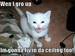 Wen I gro up,  Im gonna liv in da ceiling too!