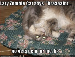 "Lazy Zombie Cat says, ""braaaainz...  go gets dem for me, k?"""