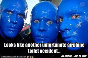 Looks like another unfortunate airplane toilet accident...
