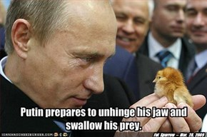 Putin prepares to unhinge his jaw and swallow his prey.