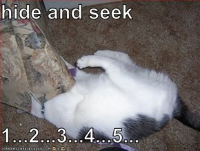 hide and seek  1...2...3...4...5...