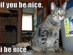 if you be nice,  i be nice