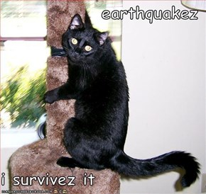earthquakez  i survivez it