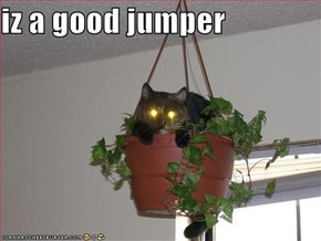 iz a good jumper