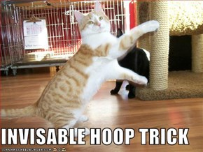 INVISABLE HOOP TRICK