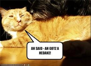 AH SAID - AH GOTZ A HEDAKE!