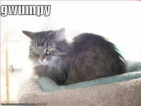 gwumpy