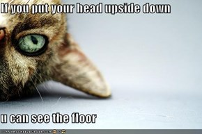 If you put your head upside down  u can see the floor