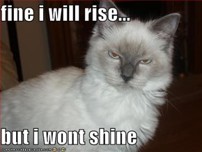 fine i will rise...  but i wont shine