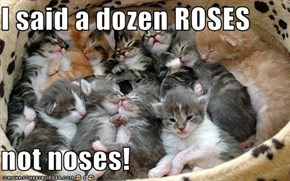 I said a dozen ROSES  not noses!