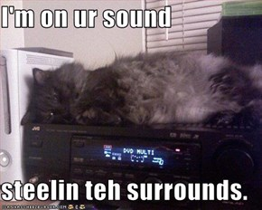 I'm on ur sound   steelin teh surrounds.