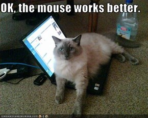 OK, the mouse works better.