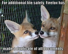 For additional file safety, Firefox has     made a duplicate of all documents.