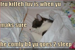 tru kitteh luv is when yu maks sure he comfy b4 yu goes 2 sleep