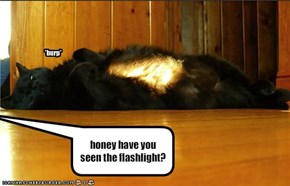 honey have you seen the flashlight?