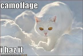 camoflage  i haz it