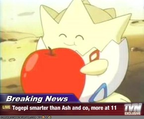 Breaking News - Togepi smarter than Ash and co, more at 11