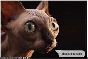 Phooone Hooome