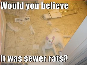 Would you believe  it was sewer rats?