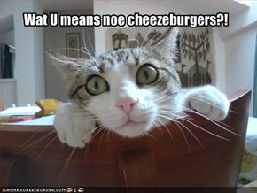Wat U means noe cheezeburgers?!
