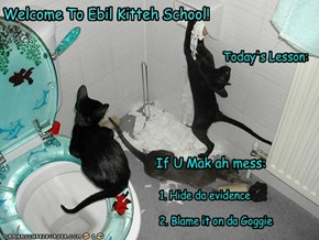 Welcome To Ebil Kitteh School!