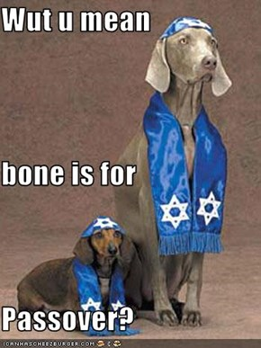 Wut u mean bone is for Passover?