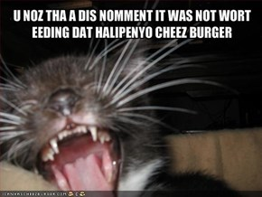 U NOZ THA A DIS NOMMENT IT WAS NOT WORT EEDING DAT HALIPENYO CHEEZ BURGER