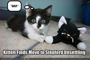 Kitteh Finds Move to Stepford Unsettling
