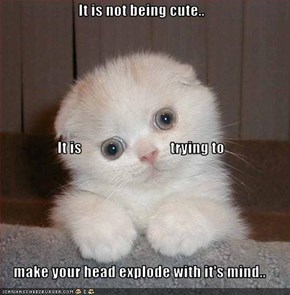 It is not being cute.. It is                              trying to make your head explode with it's mind..