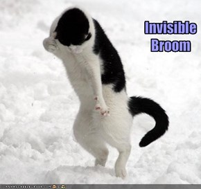 Invisible Broom